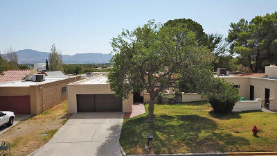 Santa Teresa Single Family Home For Sale: 161 Jeweled Mesa Drive