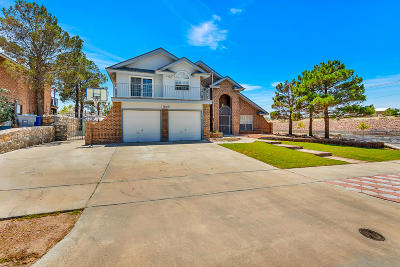 El Paso Single Family Home For Sale: 11600 Coleen Way