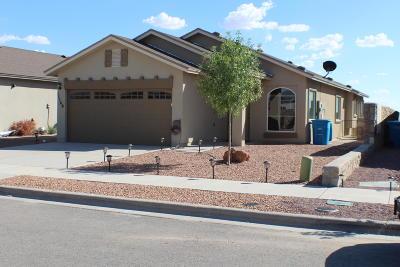 Socorro Single Family Home For Sale: 11140 Ida Coldwell Lane