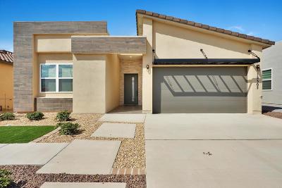 El Paso Single Family Home For Sale: 12325 Desert Dove Avenue