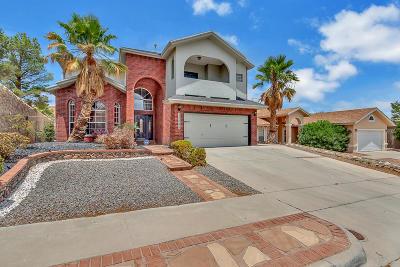 El Paso Single Family Home For Sale: 12541 Setting Sun Drive