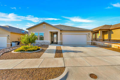 El Paso Single Family Home Active With Contingency: 7509 Wolf Creek Drive
