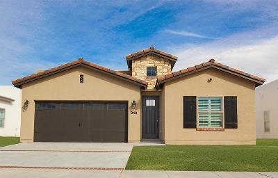 Single Family Home For Sale: 12865 Osmotherley Avenue