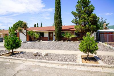 El Paso Single Family Home For Sale: 10233 Shipley Avenue