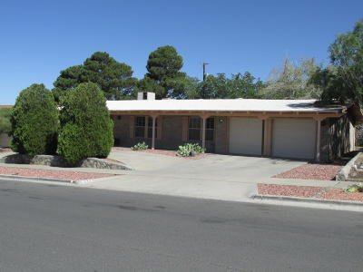 El Paso Single Family Home For Sale: 233 Northwind Drive