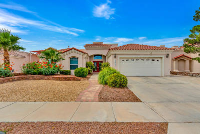 Single Family Home For Sale: 12965 Kaitlyn Reece Drive