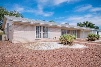 El Paso Single Family Home For Sale: 9216 Turrentine Drive