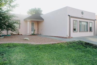 El Paso Single Family Home For Sale: 2901 Eads Place