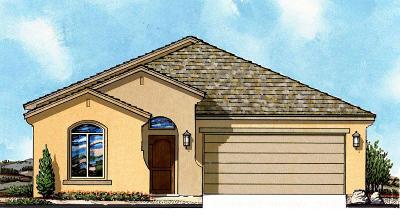 Single Family Home For Sale: 1085 Bronze Hill Avenue