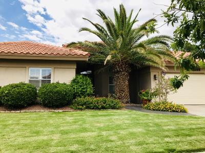 El Paso Single Family Home For Sale: 7009 Desert Canyon Drive