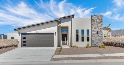 El Paso Single Family Home For Sale: 2154 Enchanted Summit Drive