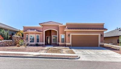 El Paso Single Family Home For Sale: 7360 Gulf Creek Drive