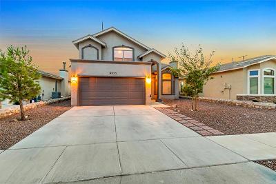 El Paso Single Family Home For Sale: 6625 Berringer Street