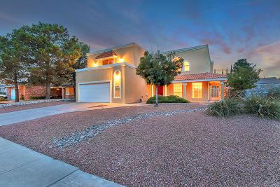 El Paso Single Family Home For Sale: 721 Patio Feliz Lane