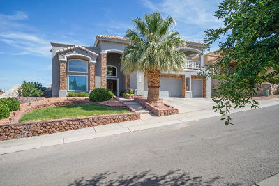 El Paso Single Family Home For Sale: 6033 Ojo De Agua Drive