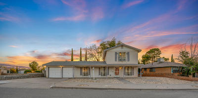 El Paso Single Family Home For Sale: 8536 Morley Drive