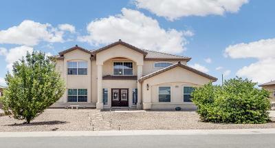 El Paso Single Family Home For Sale: 6021 Valle Espanola Lane