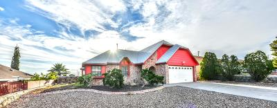 El Paso Single Family Home For Sale: 1117 Southwestern Drive