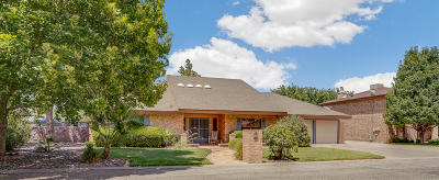 El Paso Single Family Home For Sale: 516 Country Oaks Drive