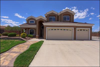 Single Family Home For Sale: 3641 Tierra Lisboa Lane