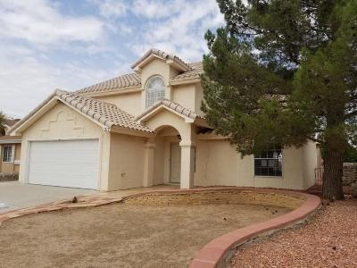 El Paso Single Family Home For Sale: 1217 Desierto Seco Drive