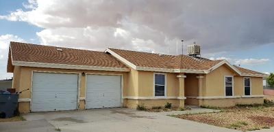 El Paso Single Family Home For Sale: 11557 Macaw Palm Drive