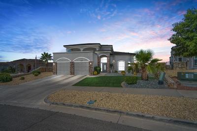 Horizon City Rental For Rent: 387 Pine Valley Avenue