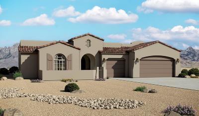 El Paso Single Family Home For Sale: 12248 Biddleston Drive