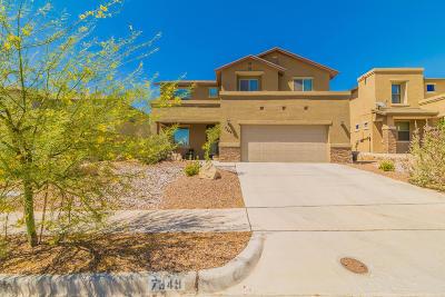 El Paso Single Family Home For Sale: 7349 Autumn Sage Dr.