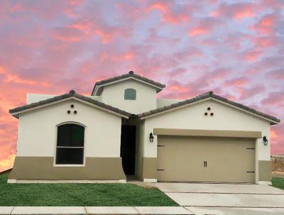 Single Family Home For Sale: 1741 Bull Ring Street