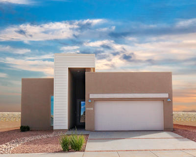 El Paso Single Family Home For Sale: 1739 Bull Ring Street