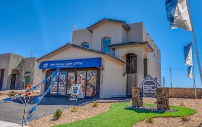 Single Family Home For Sale: 14833 Tierra Coruna Avenue