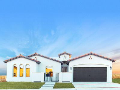 El Paso Single Family Home For Sale: 1742 Avelina Ingle Street