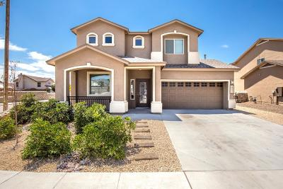 El Paso Single Family Home For Sale: 6541 Geyser Drive