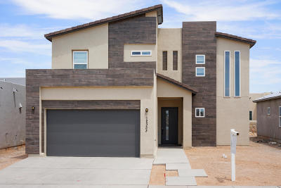 Single Family Home For Sale: 12353 Desert Dove Avenue