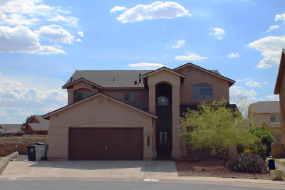 Single Family Home For Sale: 3145 Hawk Point Place
