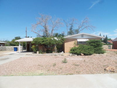 El Paso Single Family Home For Sale: 3420 Kirkwall Street