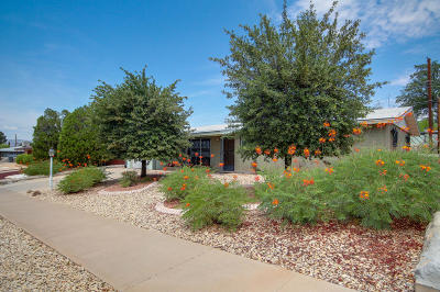 Single Family Home For Sale: 7913 Candlewood Avenue