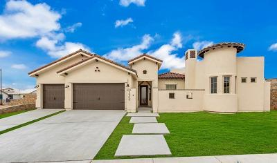 El Paso Single Family Home For Sale: 1306 Desert Sky Place