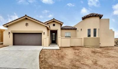 El Paso Single Family Home For Sale: 1766 Sidesaddle Drive