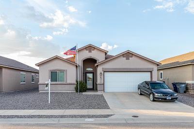 El Paso Single Family Home For Sale: 14311 Early Morn Avenue Avenue