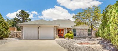 Vista Hills Single Family Home For Sale: 11517 Town Lake Lane