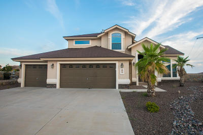 Horizon City Single Family Home For Sale: 376 Emerald Park Drive