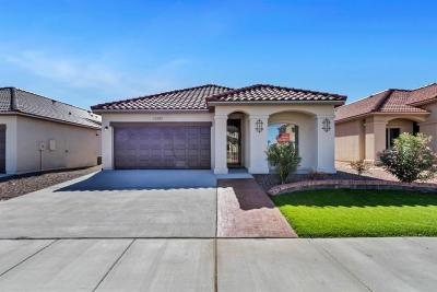 Horizon City Single Family Home For Sale: 558 Oilfield Drive