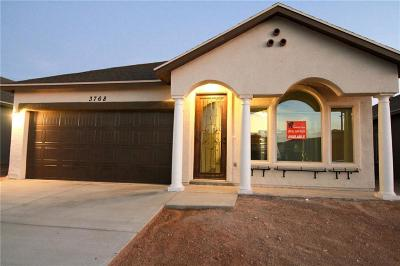 Horizon City Single Family Home For Sale: 546 Oilfield Drive