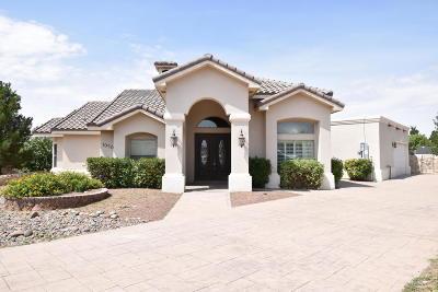 El Paso Single Family Home For Sale: 1050 Castillo Court