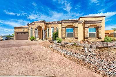 El Paso Single Family Home For Sale: 1693 Rosston Way