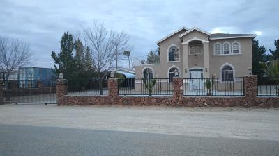 Clint Single Family Home For Sale: 14932 Blacktail Deer