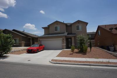 El Paso Single Family Home For Sale: 7504 Glacier Drive