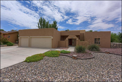 El Paso Single Family Home For Sale: 612 Timber Oaks Drive